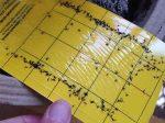 چسب حشره گیر آسان ترین راه برای از بین بردن و رهایی از انواع حشرات